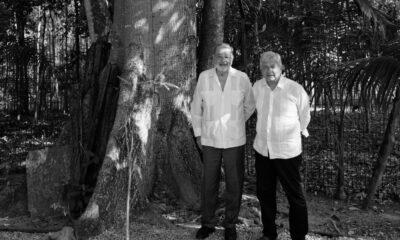 Propondrá AMLO a Biden apoyar Sembrando Vida en Centroamérica