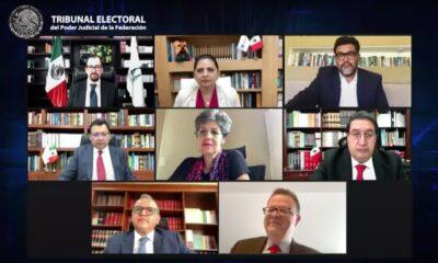 No puede haber representantes partidistas en consulta del 1 de agosto: TEPJF