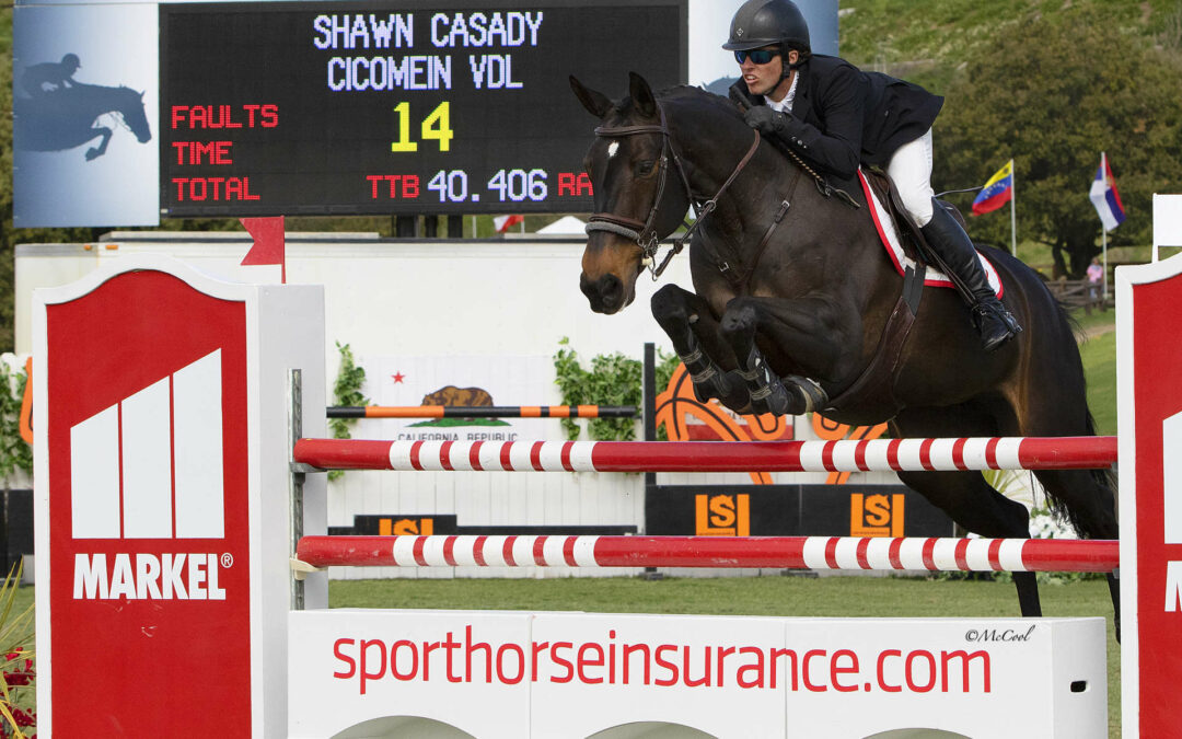 Shawn Casady And Cicomein VDL Hit The Daily Double