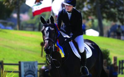 A Talent Search Tale: An Important Step in the Show Jumping Pathway