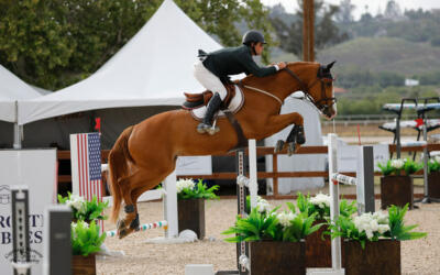 YOUNG JUMPER PROFILE: MONSEIGNEUR AKA 'MONSTER'