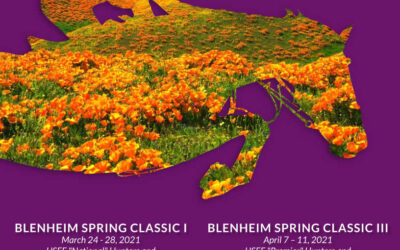 Robert's December Update & 2021 Blenheim Spring Prize List