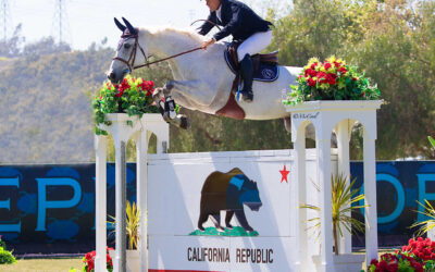 A Golden Finish for the Gold Tour at Blenheim Spring Classic II