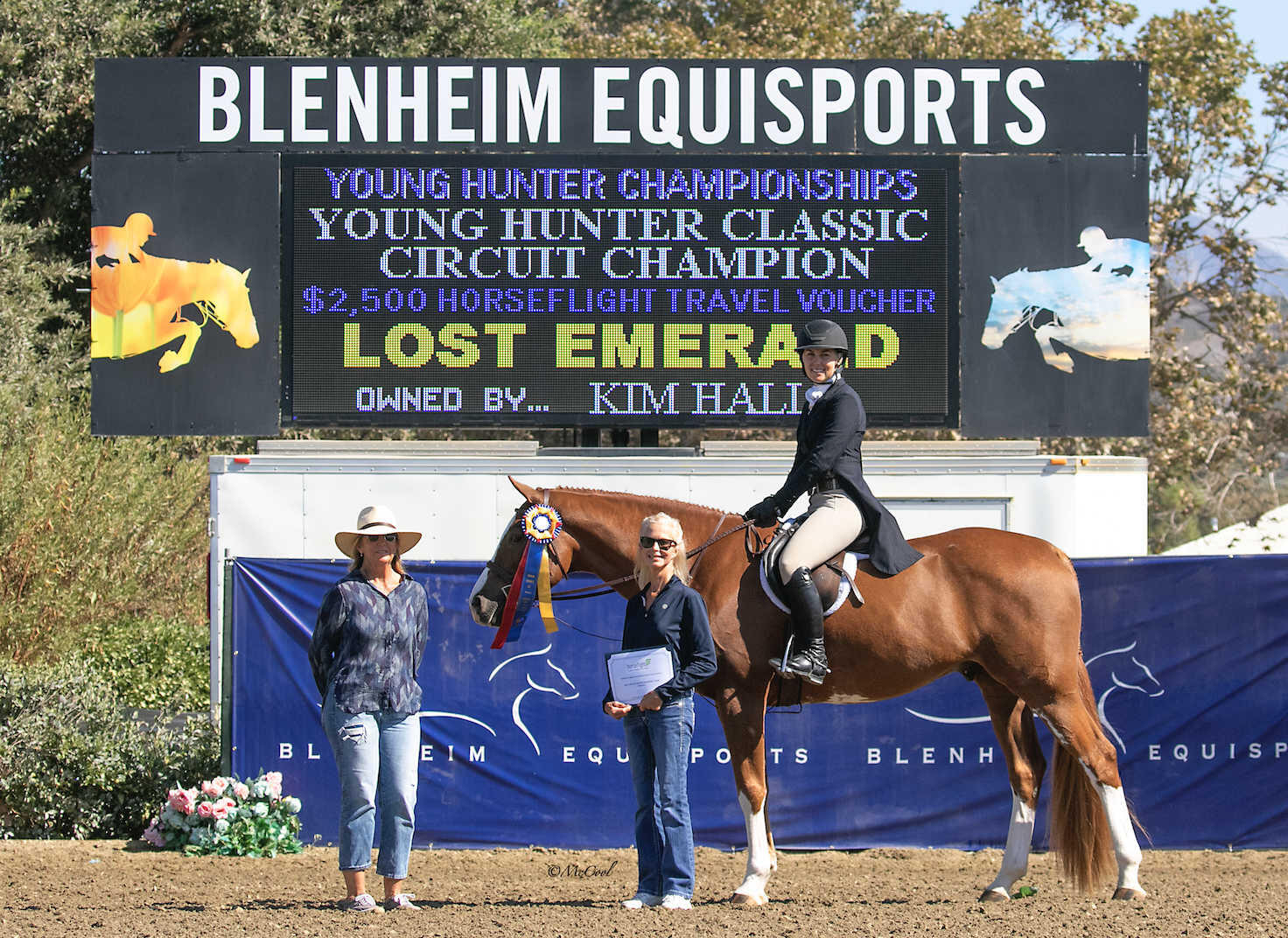 Horse Lost Emerald