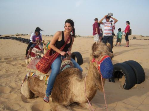 Riding Camels in the United Arab Emirates