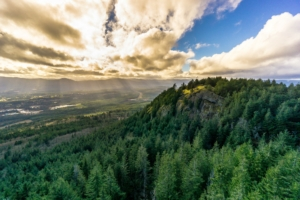 Cowichan Valley.org