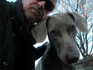 man with sunglasses and Weimaraner dog