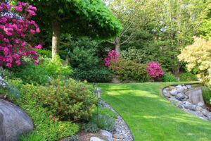 colorful landscaping purple and green foliage