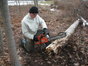 man kneeling while saw cutting a tree with an orange chainsaw