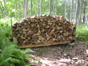 large firewood holder filled with split wood in the middle of woods
