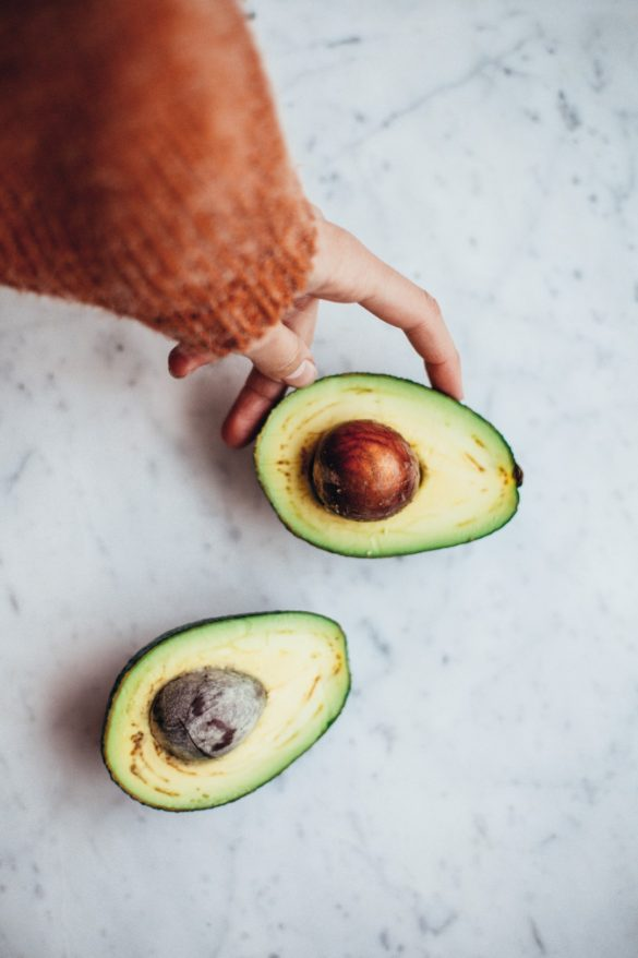 como germinar una semilla de palta aguacate, how to grow an avocado seed