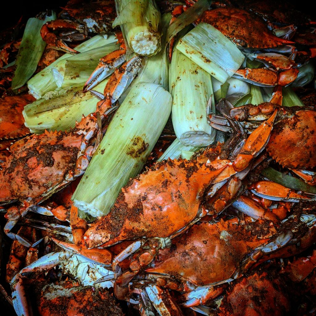 steamed crabs and steamed corn