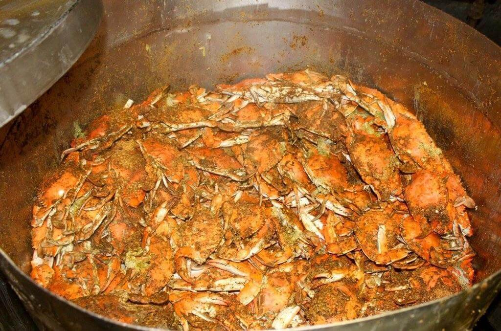Steamed Maryland Crabs