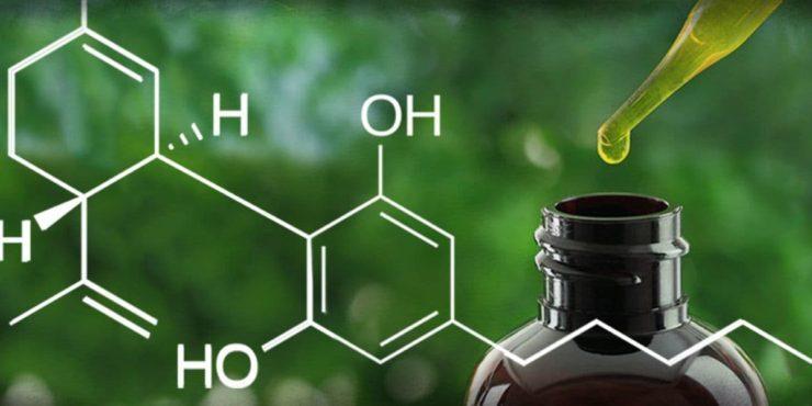 cannibidiol, cbd, cannabis - grow enclosures