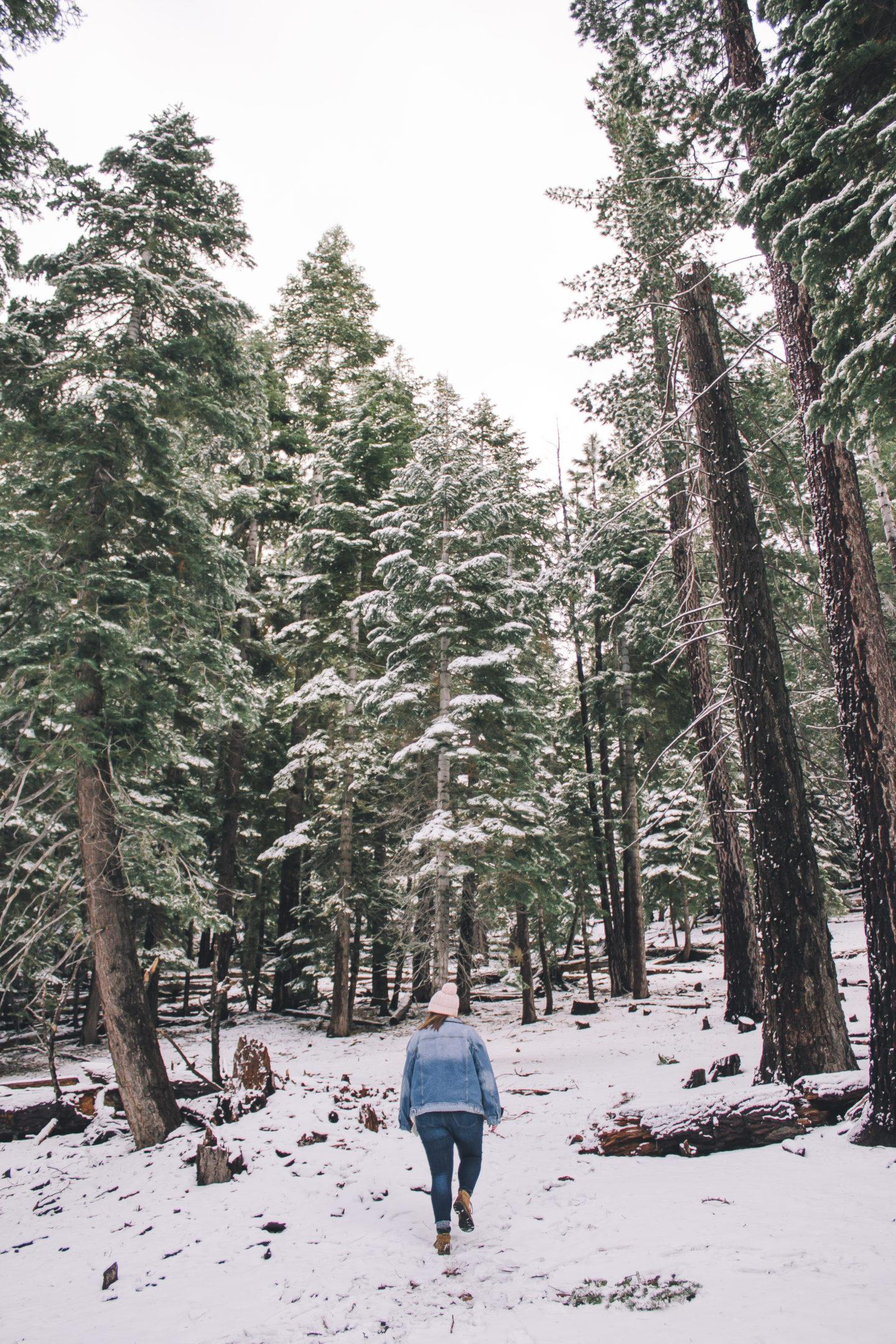 Winter Wonderland, snow day outfit // www.wanderabode.com