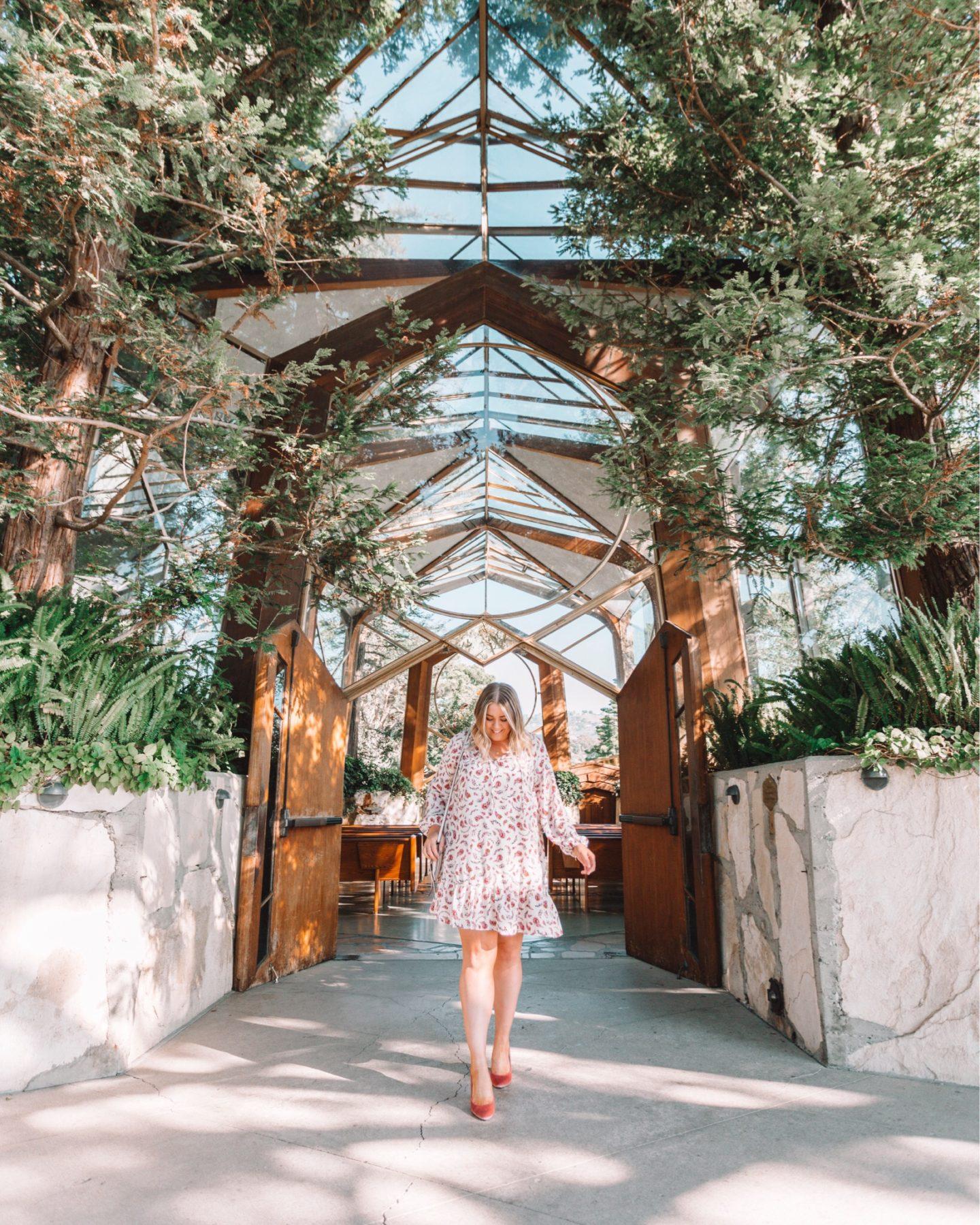 This Week's Instagram Roundup - wander abode