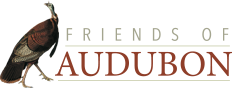 Friends of Audubon