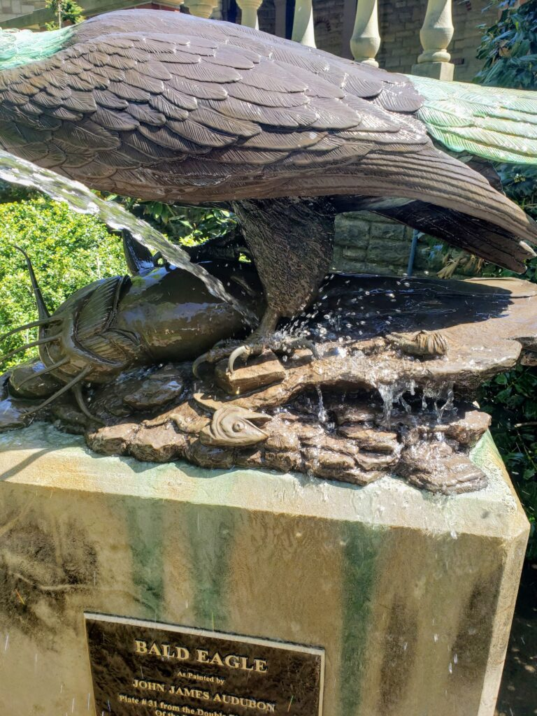 Photograph of rinsing the bald eagle statue with water.