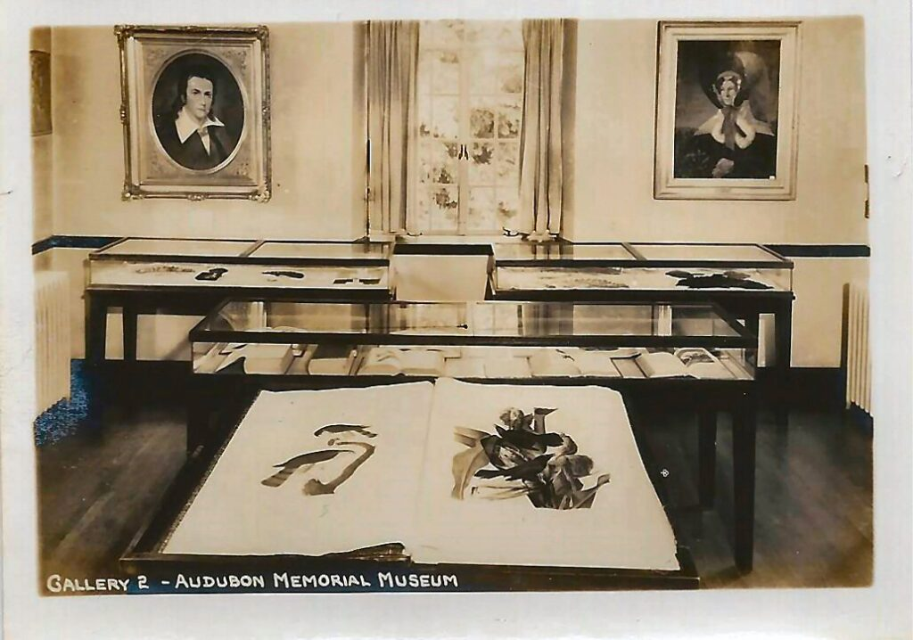 Photograph of Gallery 2 in the Audubon Memorial Museum