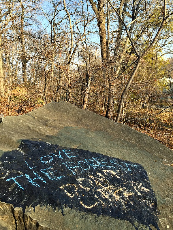 Inwood Hill Park - Love the forest