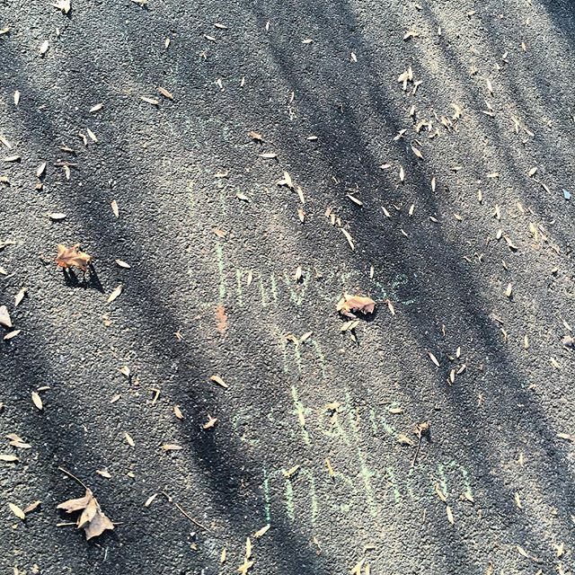 Nature Art - Inwood Hill Park - Motion
