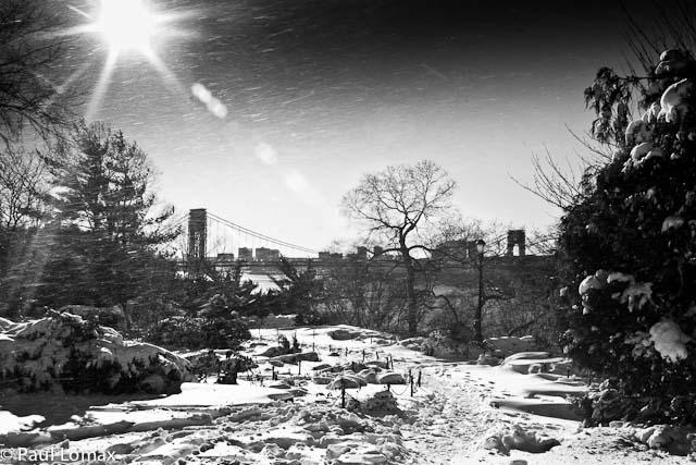 Winter - Paul Lomax