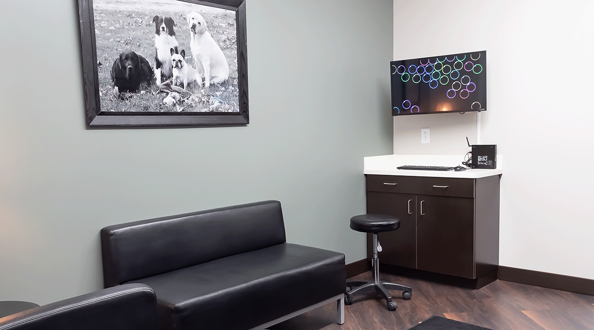 Stauffer Veterinary Surgical Center | Inside the Practice
