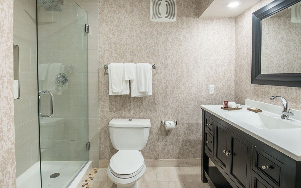 Bathroom with glass shower stall, toilet, and single-sink countertop