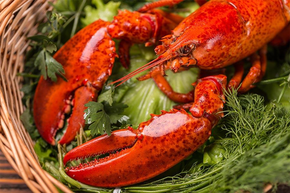 Lobster Bake Special
