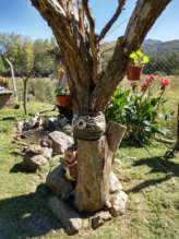 árbol seco de adorno
