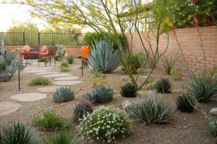 Succulents and Desert  Plants Provide A Natural Look