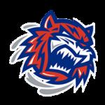 logo17.1