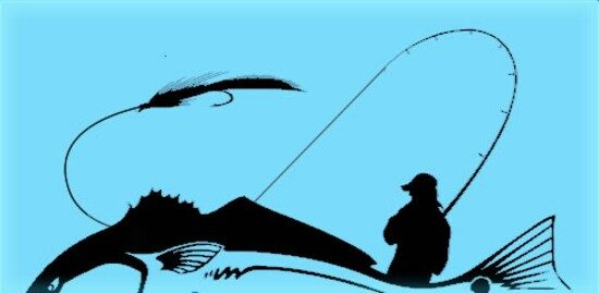 First Coast Fly Fishers