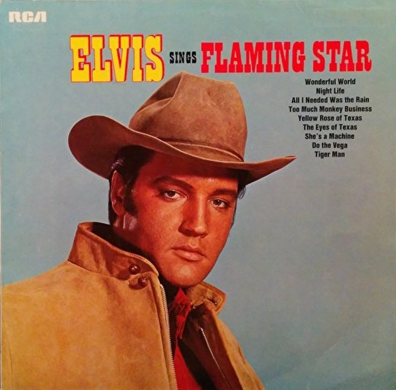 SingerFlamingStar7