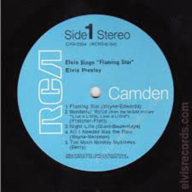 SingerFlamingStar9