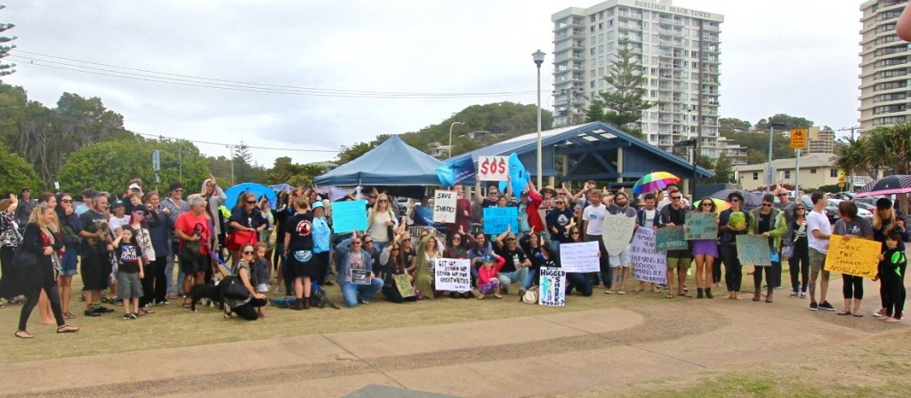 Father's Day 2014 No Shark Cull for Queensland Rally, Burleigh Heads Queensland Photo per Nicole McLachlan Timeline Photos