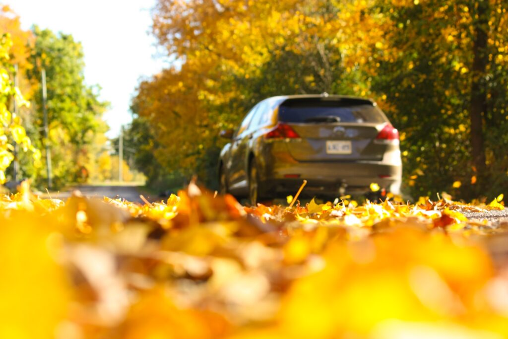 Four Fall Driving Safety Tips