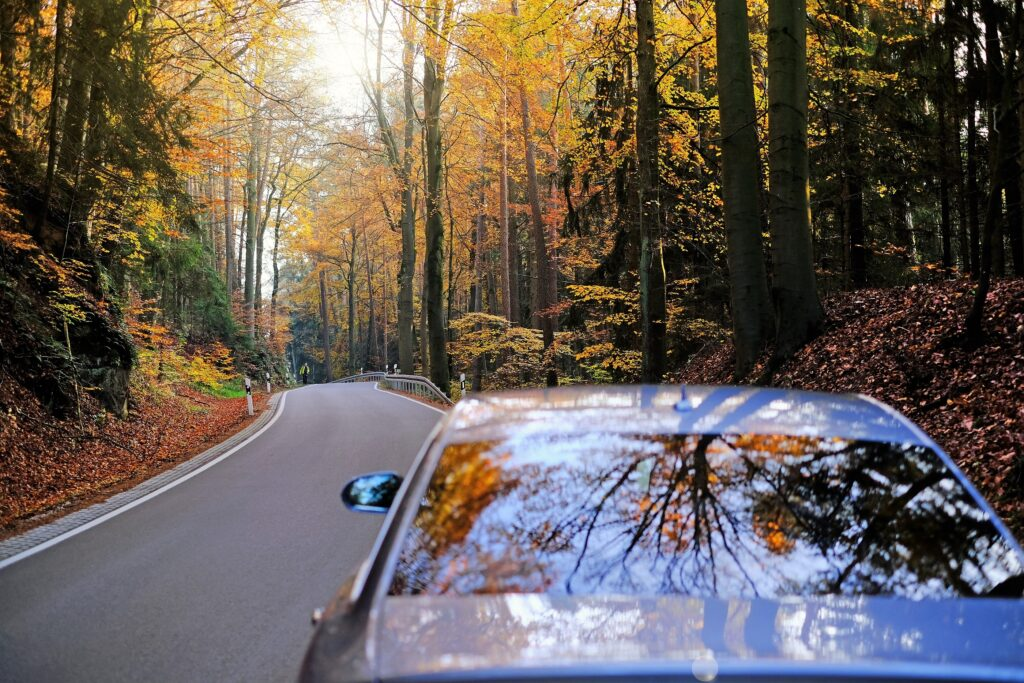 Watch Out for These Four Fall Driving Hazards