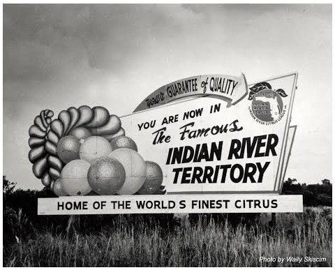 Indian River Fruit