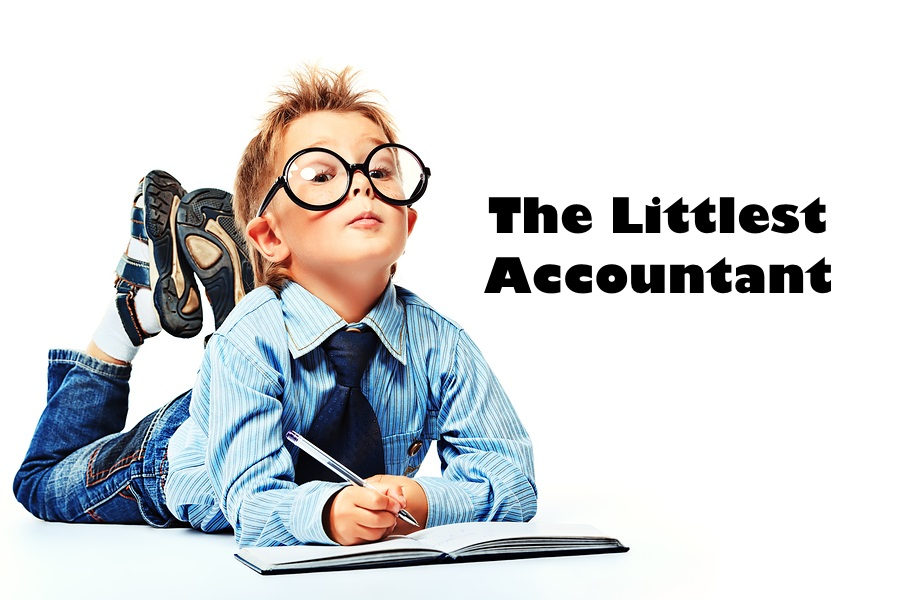 The littlest accountant