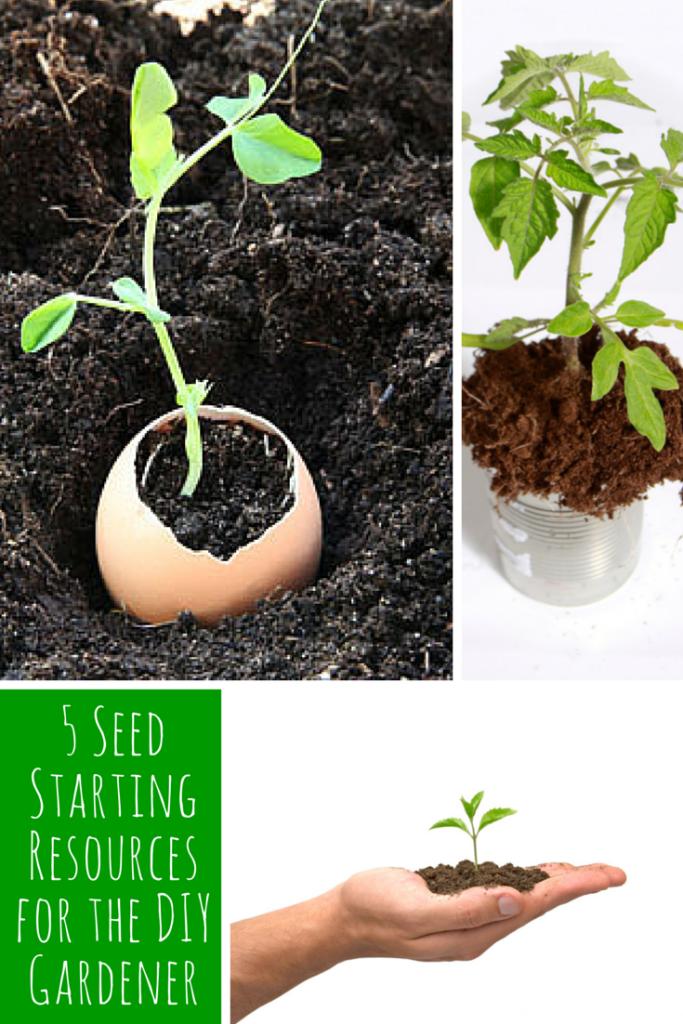 5 SeedStartingResources for the