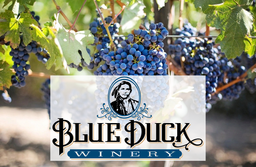 blue-duck-winery