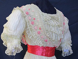 The Golden Age of California: Women's City Fashions of the 1890's