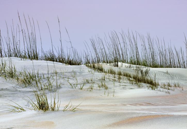 Anastasia State Park Beach