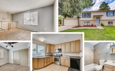 Sold! Littleton Bi-Level