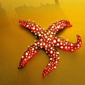 Spiny Starfish Sculpture