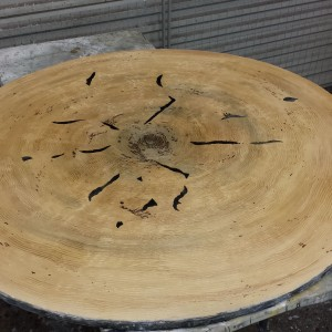 Tree Slice Table