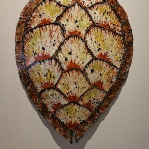 Sea Turtle Shell Design