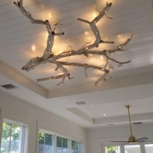 Ceiling Branch Light