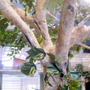 Tree Sculpture Detail